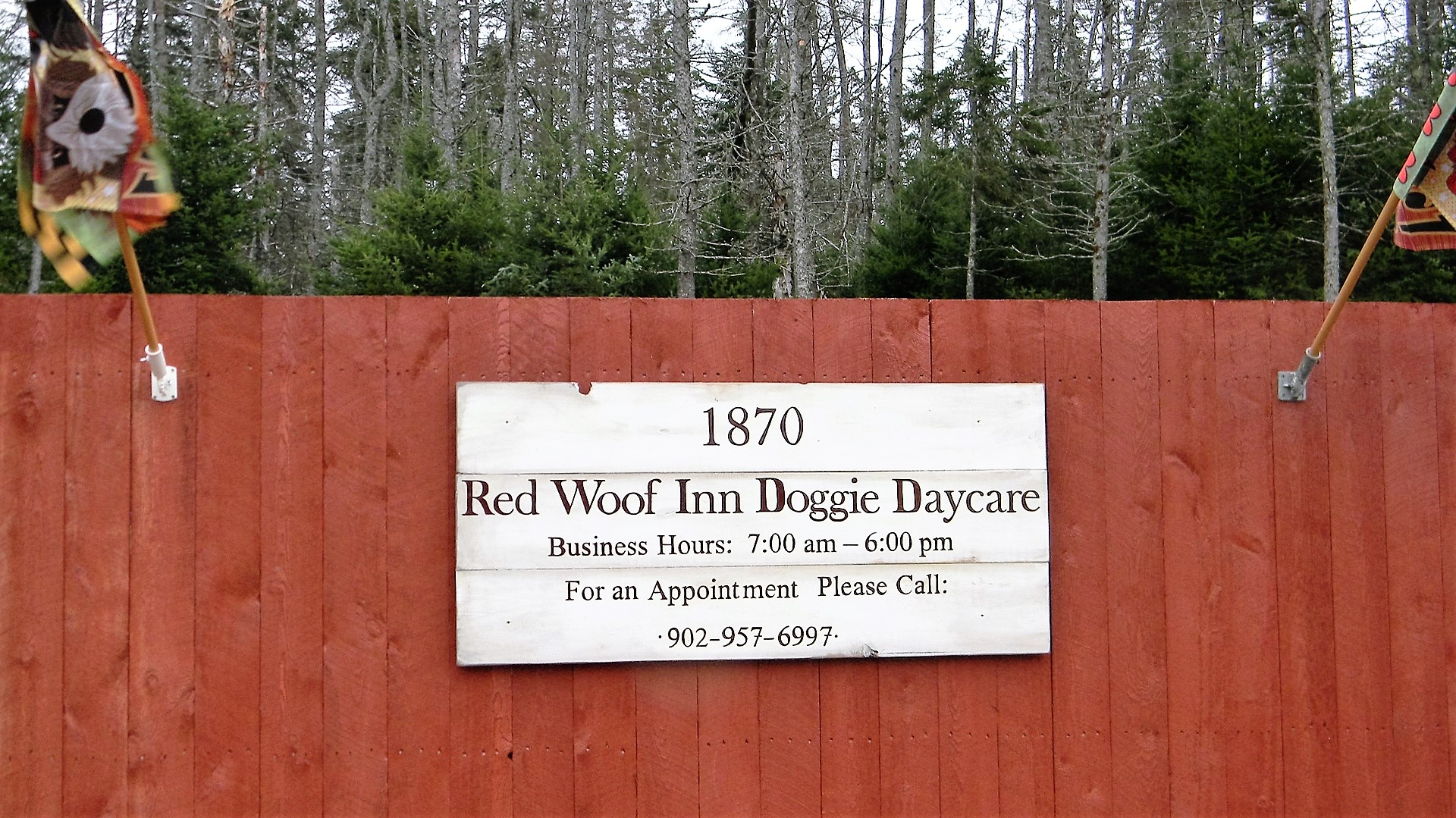 Red woof inn doggie daycare truro colchester chamber for Red dog daycare